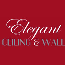 Elegant Ceiling and Walls